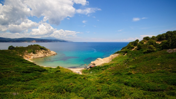 Beautiful-Blue-Sea-Water-Along-a-Green-Shore